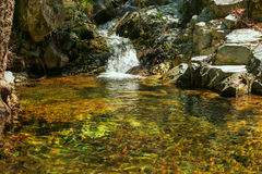 Small waterfall on the mountain river Royalty Free Stock Photography