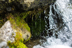 Small waterfall mountain stream close up stock photo