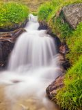 Small waterfall on mountain stream in summer meadow of Alps. Cold and rainy weather. Royalty Free Stock Photography
