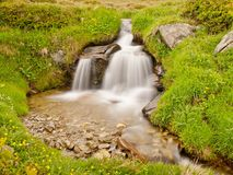 Small waterfall on mountain stream in summer meadow of Alps. Cold and rainy weather. Royalty Free Stock Image
