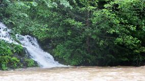 A small waterfall near Lake Synevir, which falls into a swift mountain river stock video footage