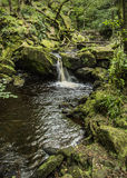 Small waterfall in Padley Gorge in Derbyshire, England Royalty Free Stock Photo