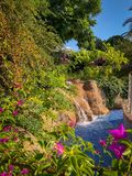 A small waterfall in a park royalty free stock images