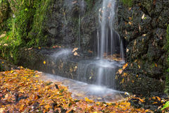 Small waterfall in the park Stock Photography