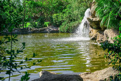 Small waterfall in the park Royalty Free Stock Photo