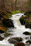 Small waterfall in Quebec forest. During the spring Stock Photos