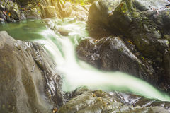 Small waterfall in rain forest Stock Image
