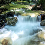 Small waterfall in rainforest. Royalty Free Stock Images