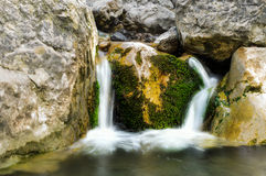 A small waterfall on the river. A small river flowing in the forest Stock Photos