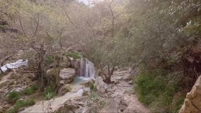 Small waterfall and river stock video