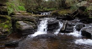 Small Waterfall and River Royalty Free Stock Photo