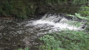 Water fall. A small waterfall on river stock footage