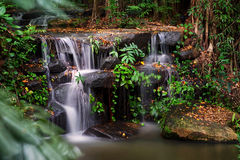 Small waterfall on the rocks in the forest Royalty Free Stock Images