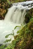 Small waterfall from the side Stock Images