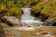 Small Waterfall in Spring Royalty Free Stock Photography