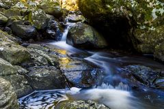 Small Waterfall In Springbrook National park Stock Image