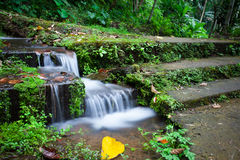 A small waterfall by the stone stairs in the jungle. A small waterfall by the stone stairs covered with moss in the tropical jungle Royalty Free Stock Images