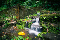 A small waterfall by the stone stairs in the jungle. A small waterfall by the stone stairs covered with moss in the tropical jungle Royalty Free Stock Photos