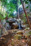 Small waterfall in stream Royalty Free Stock Images