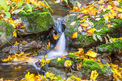 Small waterfall in a stream at autumn Royalty Free Stock Image