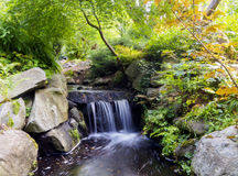 Small Waterfall from a stream in the beautiful gardens of  Beacon Hill Park Stock Photos