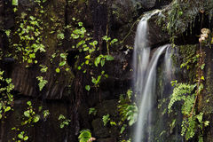 Small waterfall. Small stream breaking through stones stock photos