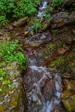 Small waterfall with stream at forest royalty free stock photos