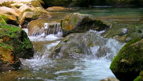 Small waterfall in summer forest stock footage