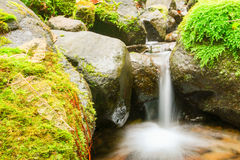 Small Waterfall Theme Royalty Free Stock Image