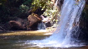 Small waterfall in tropical forest stock video