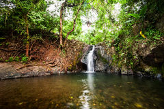 Small waterfall at tropical rain forest. Vang Vieng, Laos Royalty Free Stock Images