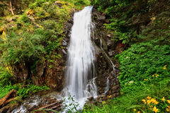 Small waterfall in Val di Sole Royalty Free Stock Photography