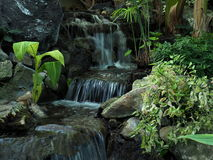 Small Waterfall With Vegetation Stock Photo