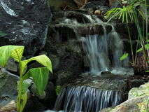 Small Waterfall With Vegetation Stock Photography
