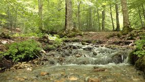 Small Waterfall stock footage