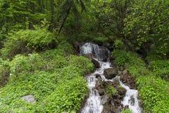 Small waterfall Village of Capalna Romania. Small waterfall neer the village of Capalna and Sebes river Romania royalty free stock photo