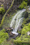 Small waterfall in virgin nature Royalty Free Stock Image