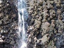A small waterfall in the wild jungle .  Palawan Island . A small waterfall in the wild jungle . Philippines. Palawan Island stock video footage