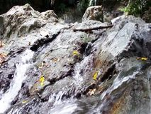 A small waterfall in the wild jungle . . Palawan Island . A small waterfall in the wild jungle . Philippines. Palawan Island stock footage