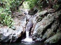 A small waterfall in the wild jungle . . Palawan Island . A small waterfall in the wild jungle . Philippines. Palawan Island stock video