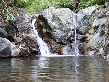 A small waterfall in the wild jungle . Philippines. Palawan Island stock footage