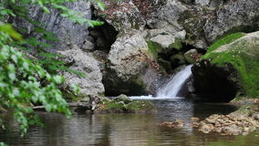 Small waterfall in wild nature, lounge video Stock Photos