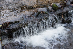 A small waterfall in a woodland stream in England Stock Image