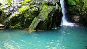 Small Waterfall Zeleni vir. Small Waterfall, Zeleni vir, Gorski kotar, Croatia, full hd video stock video footage