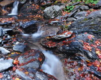 Small waterfalls Stock Photo