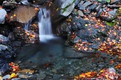 Small waterfalls Royalty Free Stock Photography