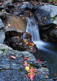 Small waterfalls Stock Images