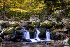 Small waterfalls on a clear mountain stream Stock Photos