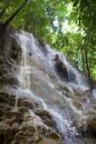 Small waterfalls in the jungle Royalty Free Stock Image