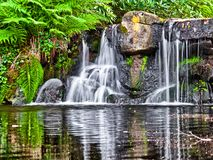 Small waterfalls. Stock Photos